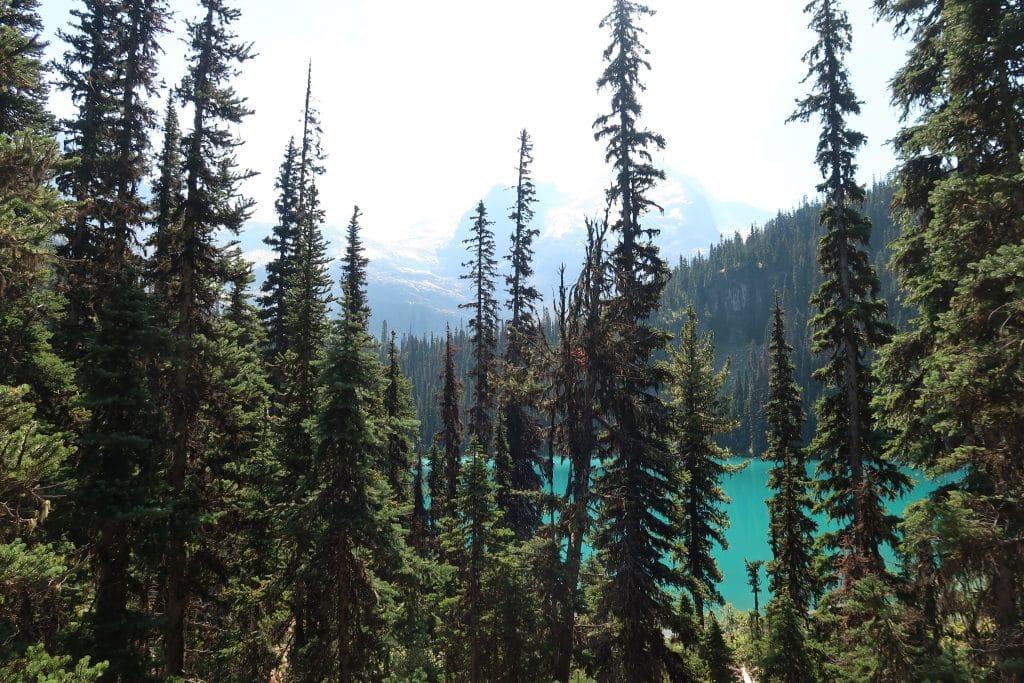 vista middle lake
