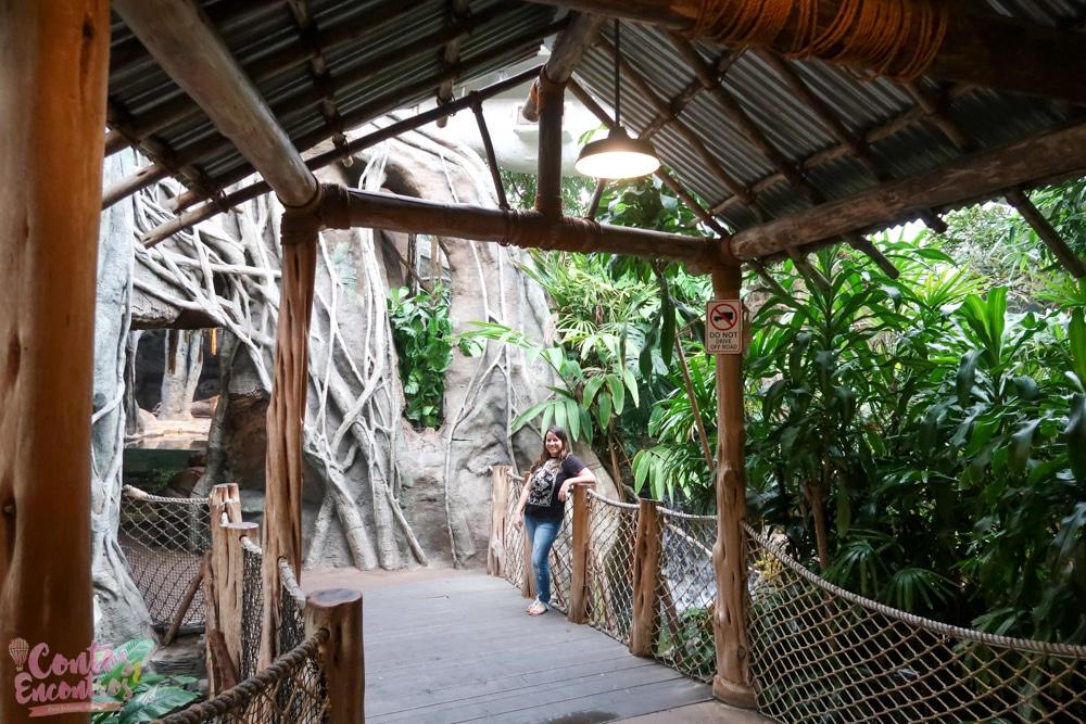 Zoo de Chicago